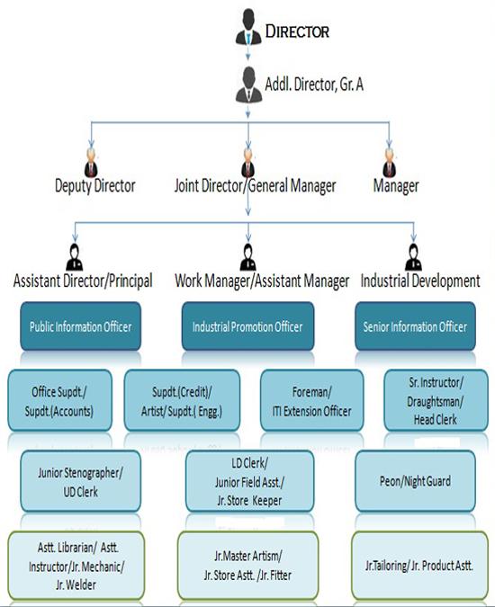 organization_profile